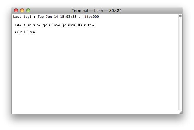 sixth_terminal